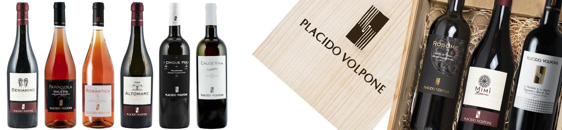 vendita online vini nero di troia - Cantina Placido Volpone